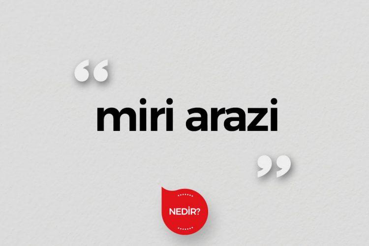 Miri Arazi