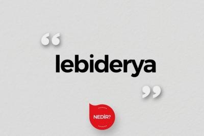 Lebiderya